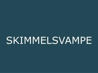 SKIMMELSVAMPE