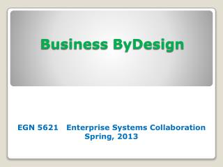 Business  ByDesign