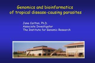Genomics and bioinformatics  of tropical disease-causing parasites
