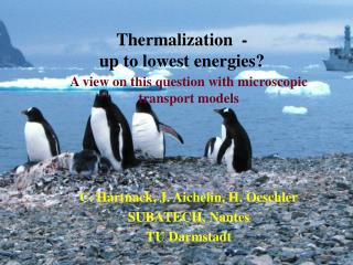 Thermalization  - up to lowest energies?
