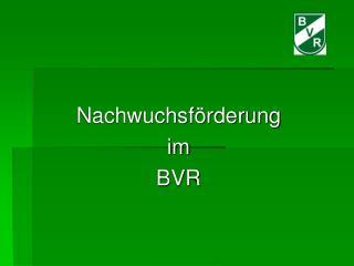 Nachwuchsförderung  im  BVR