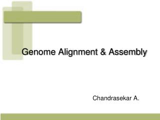 Genome Alignment & Assembly