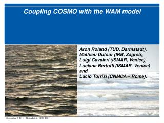 Coupling COSMO with the WAM model