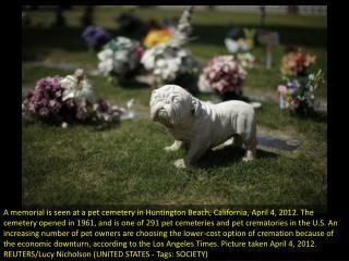 Beloved pets find final resting place