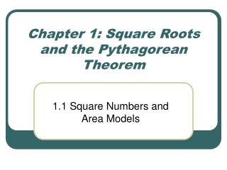 Chapter 1: Square Roots and the Pythagorean Theorem