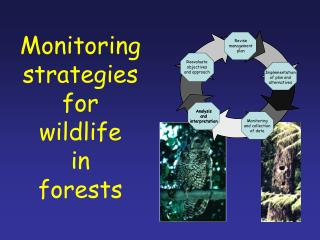 Monitoring strategies for wildlife in