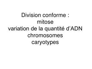 Division conforme : mitose variation de la quantité d'ADN chromosomes caryotypes