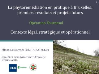 La phytoremédiation en pratique à Bruxelles: premiers ré sultats et projets futurs