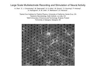 Large Scale Multielectrode Recording and Stimulation of Neural Activity