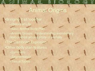 Animal Origins