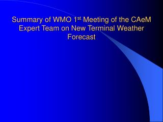 Summary of WMO 1 st  Meeting of the CAeM Expert Team on New Terminal Weather Forecast