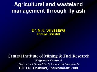 Agricultural and wasteland management through fly ash Dr. N.K. Srivastava Principal Scientist