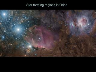 Star forming regions in Orion