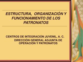 ESTRUCTURA,  ORGANIZACIÓN Y FUNCIONAMIENTO DE LOS  PATRONATOS
