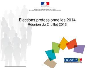 Elections professionnelles 2014      Réunion du 2 juillet 2013