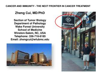CANCER AND IMMUNITY - THE NEXT FRONTIER IN CANCER TREATMENT