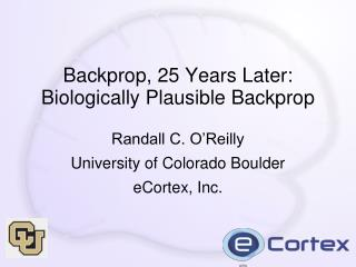 Backprop, 25 Years Later: Biologically Plausible Backprop