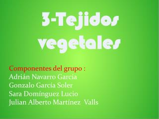 3-Tejidos vegetales