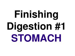 Finishing Digestion #1  STOMACH