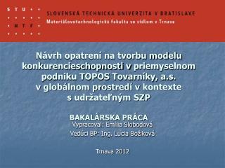 Vypracoval: Emília Slobodová Vedúci BP: Ing. Lucia Božiková Trnava 2012