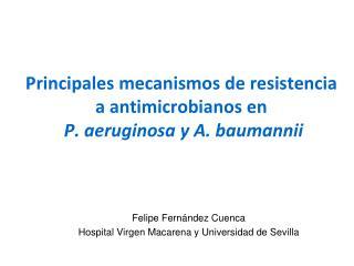 Principales mecanismos de resistencia a antimicrobianos en P. aeruginosa y A. baumannii