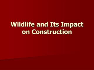 Wildlife and Its Impact on Construction