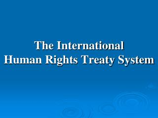 The International  Human Rights Treaty System