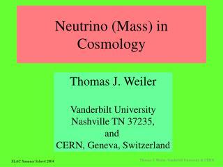 Neutrino (Mass) in Cosmology