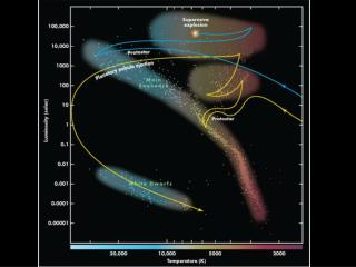 1) Proto Star