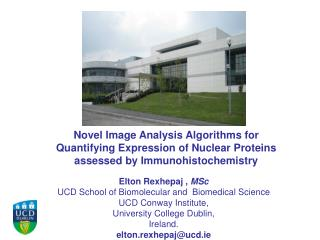 Elton  Rexhepaj  ,  MSc UCD School of  Biomolecular  and  Biomedical Science