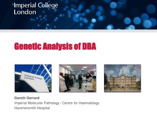 Genetic Analysis of DBA
