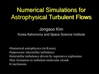 Numerical Simulations for Astrophysical Turbulent Flows