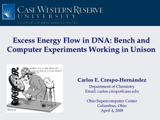 Excess Energy Flow in DNA: Bench and Computer Experiments Working in Unison