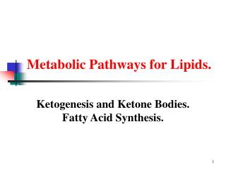 Metabolic Pathways for Lipids.