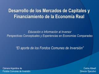 Desarrollo de los Mercados de Capitales y Financiamiento de la Economía Real