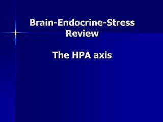 Brain-Endocrine-Stress Review  The HPA axis