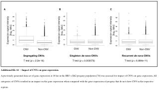 Additional file 14  – Impact of CNVs on gene expression.