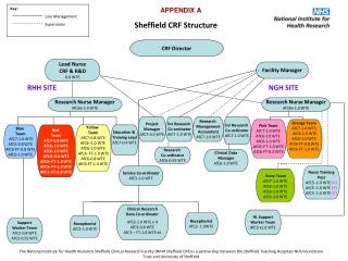 Sheffield CRF Structure
