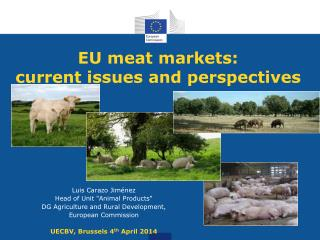 EU meat markets: current issues and perspectives