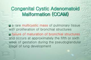 Congenital Cystic Adenomatoid Malformation (CCAM)