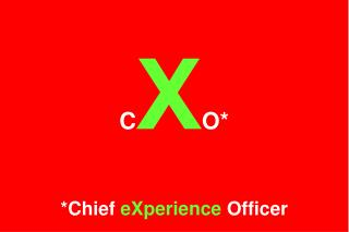 C X O* *Chief  eXperience  Officer