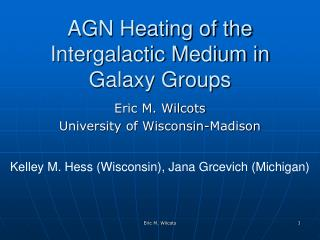 AGN Heating of the Intergalactic Medium in Galaxy Groups
