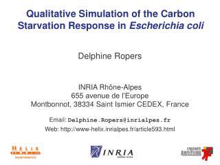 Qualitative Simulation of the Carbon Starvation Response in  Escherichia coli