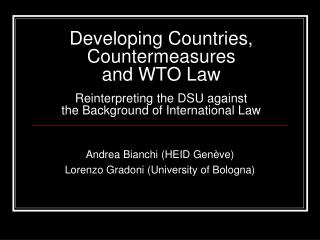Andrea Bianchi (HEID Genève) Lorenzo Gradoni (University of Bologna)