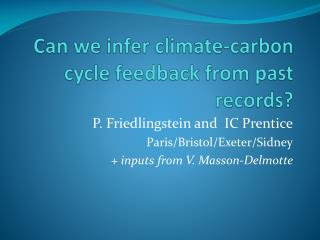 Can we  infer climate-carbon cycle feedback from past records?