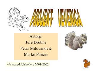 Avtorji: Jure Drobne Petar Milovanović Marko Puncer