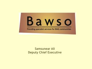 Samsunear Ali  Deputy Chief Executive