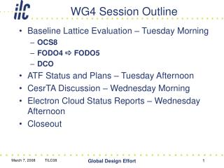WG4 Session Outline