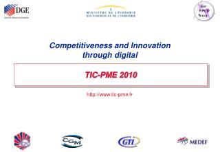 TIC-PME 2010