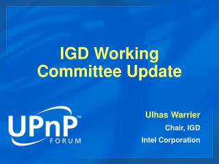 IGD Working Committee Update